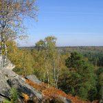 Une randonnée à Fontainebleau